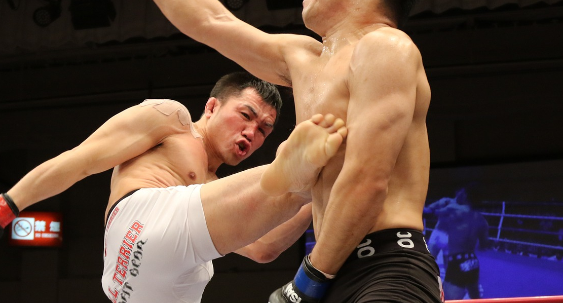 mixed-martial-arts-1314503_1920
